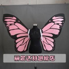 丽晨达羽翅膀店